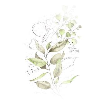Aquarellanordnung mit dem grün lässt silbernen krautblumenstrauß lokalisiert