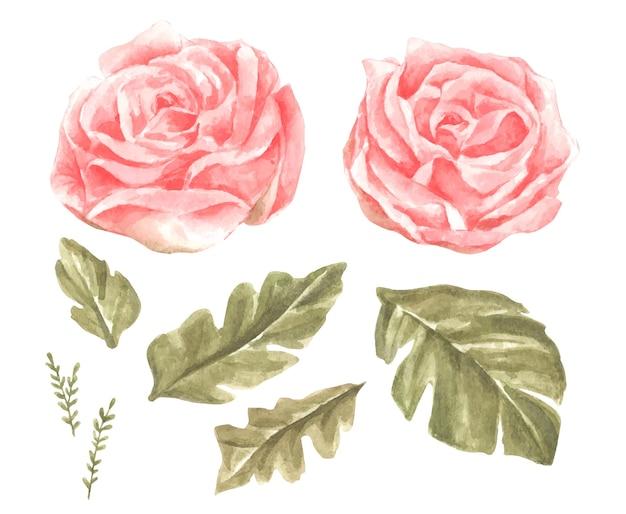 Aquarellblumen setzen illustration