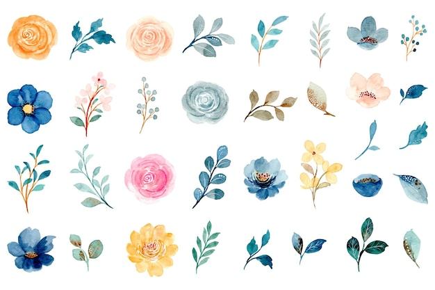 Aquarellblumen- und blattelementsammlung
