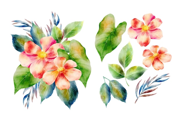 Aquarellblumenanordnungshintergrund