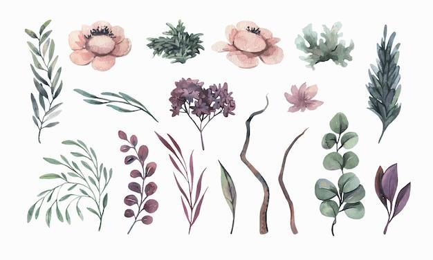 Aquarellblumenblätter und -blumen