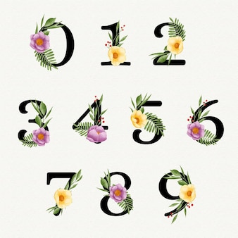Aquarellblumennummernsammlung