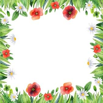Aquarellblumenrahmen mit mohnblumen und blättern Premium Vektoren