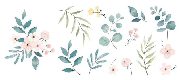 Aquarellblumensammlung flowers