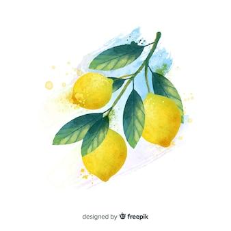 Aquarellfruchthintergrund mit zitronen