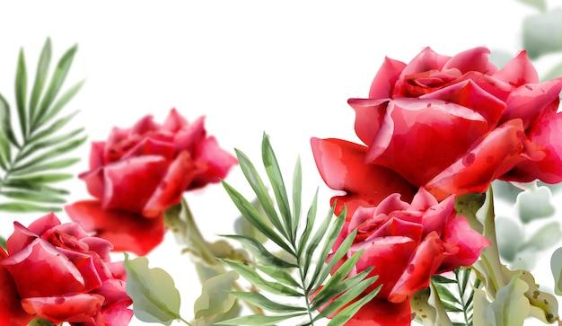 Aquarellillustration der roten rosen