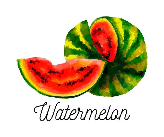 Aquarellillustration der wassermelone auf texturpapier. illustration.