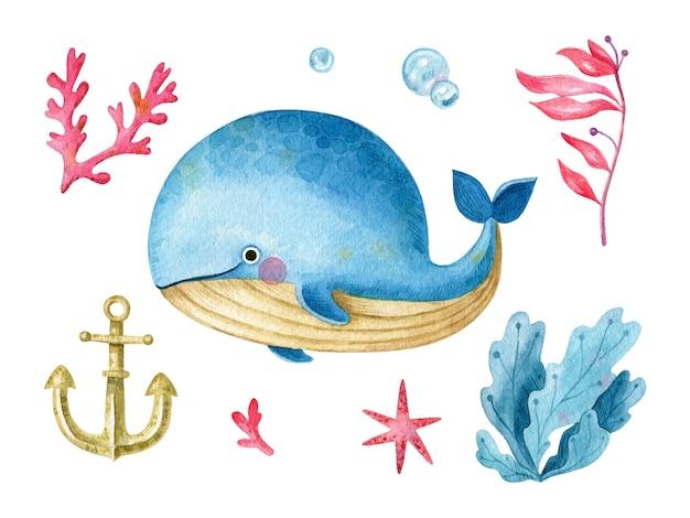 Aquarellkarikaturwal-meer-element-sammlungskarikaturcharakter