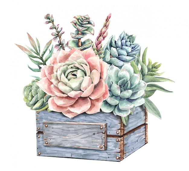 Aquarellmalerei saftige kakteen und kaktusstrauß mit holzpflanzer-baumkasten.