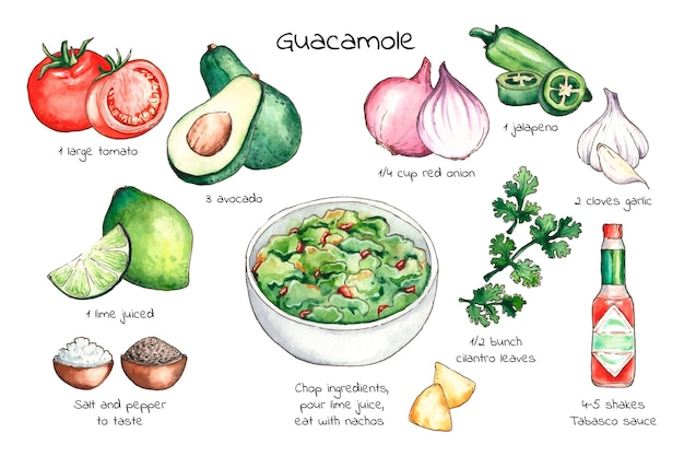 Aquarellrezept guacamole illustration