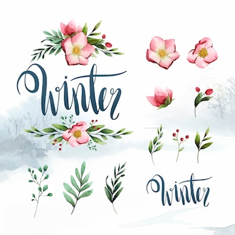 Aquarellsatz des winterblumen- und -blattvektors