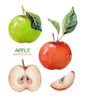 Aquarellset mit äpfeln