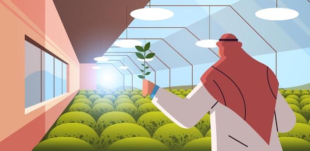Arabischer agraringenieur, der pflanzen im gewächshaus-landwirtschaftswissenschaftler erforscht, intelligentes landwirtschaftskonzept horizontale porträtvektorillustration