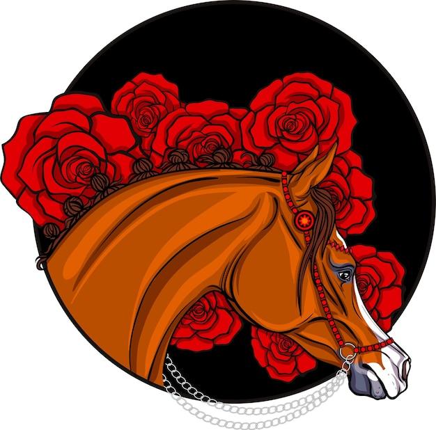 Arabisches pferd in rose