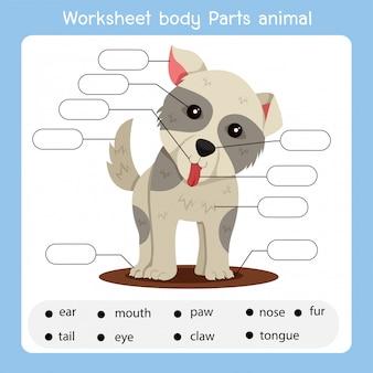 Arbeitsblatt körperteile hund tier