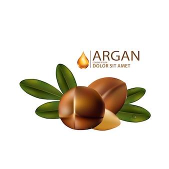 Arganöl isoliert im flachen design