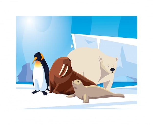 Arktische tiere am nordpol