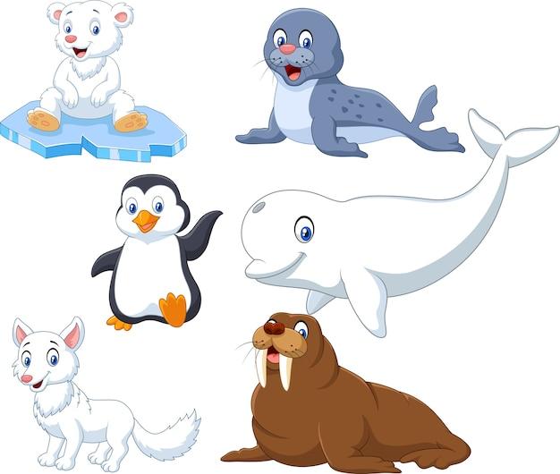 Arktische tiere sammlungssatz