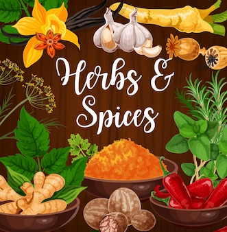 Aromatische küchenkräuter und exotische gewürze