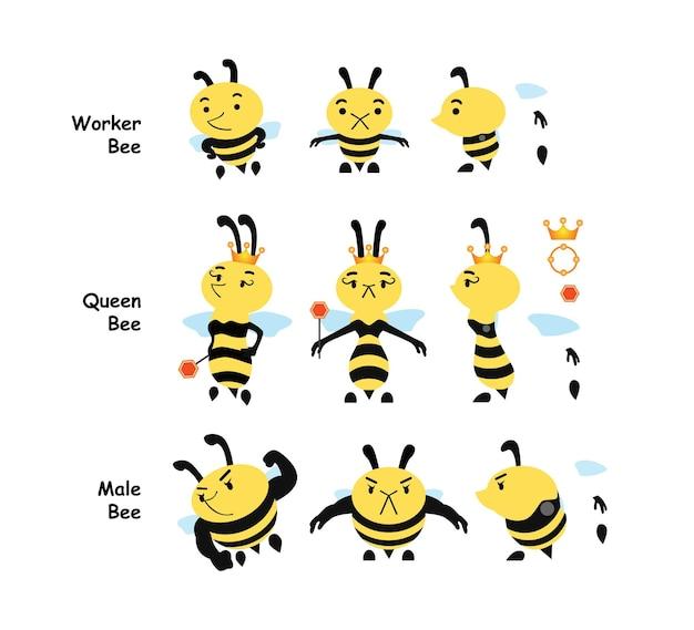 Arten von bienenstadien arbeiterbiene bienenkönigin männliche biene