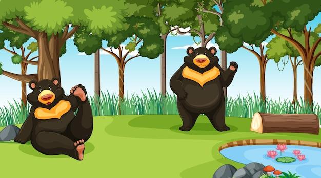 Asiatischer schwarzbär oder mondbär in der wald- oder regenwaldszene mit vielen bäumen