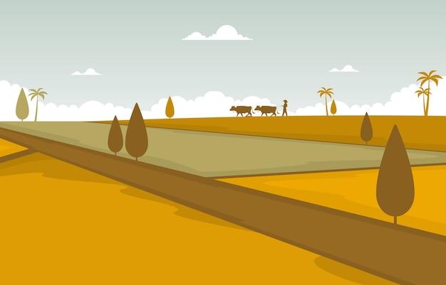 Asiatisches reisfeld golden paddy plantage bereit, illustration zu ernten
