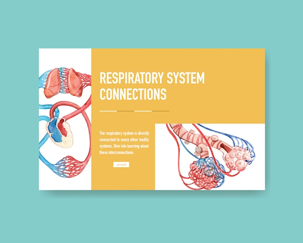 Atmungssystem design für website-vorlage mit human anatomy of lung
