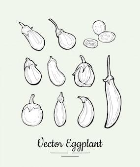 Aubergine, auberginenvektorsatz. neue lebensmittellinie hand gezeichnete illustration