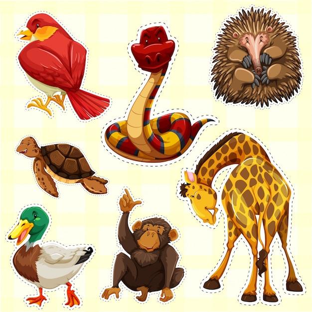 Aufkleberentwurf für tiere mit glücklichem gesicht