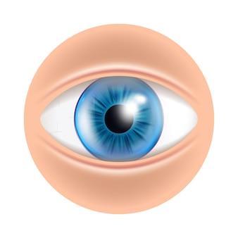 Auge menschliches gesichtsorgan mit kontaktlinsen-vektor. eye blue optisches medizinisches zubehör für korrektes sehen. anatomie-augapfel-kosmetik-werkzeug für sehkraft-schablonen-realistische 3d-illustration