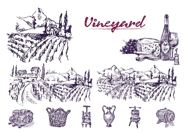 Ausführliche linie kunst hand gezeichnete purpurrote weinbergillustration