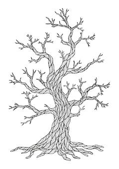 Ausmalbild: trockener baum zeichnen