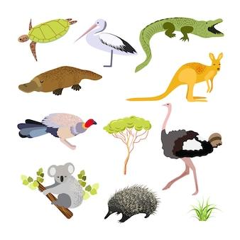 Australische tiere. illustration im flachen stil. die wichtigsten symbole des landes.