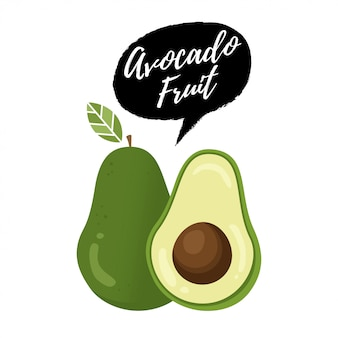 Avocado-frucht-vektorillustration