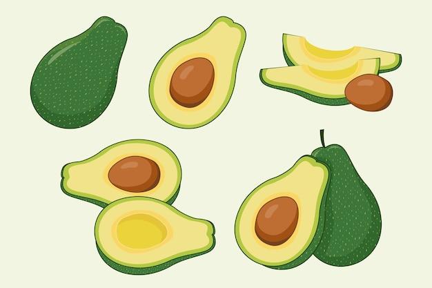 Avocado-illustrationssatz