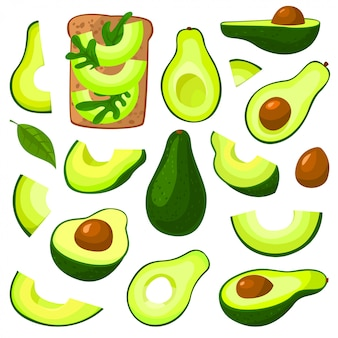 Avocado isoliertes cartoon-set-symbol. illustrationsfrucht auf weißem hintergrund. cartoon set icon avocado.