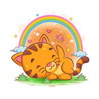 Babykatze, die im garten mit regenbogengarten schläft