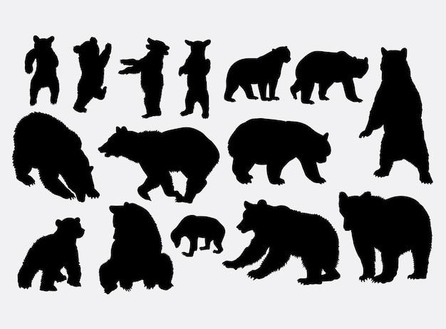 Bär, der schattenbild spielt