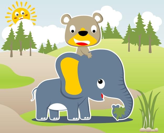 Bär fahren auf elefanten-vektor-cartoon