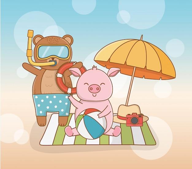Bären- und schweinkarikatur in der sommersaison