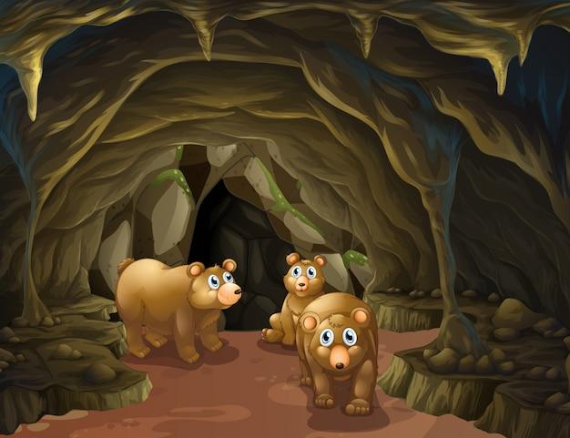 Bärenfamilie lebt in der höhle