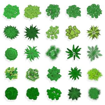 Bäume draufsicht. grüne pflanzen, büsche, sträucher und bäume für landschafts- oder architekturgestaltung