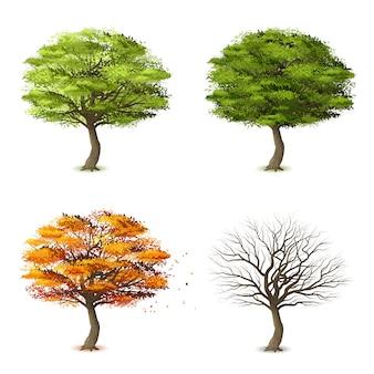 Bäume in vier jahreszeiten