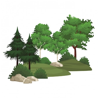 Bäume naturlandschaft