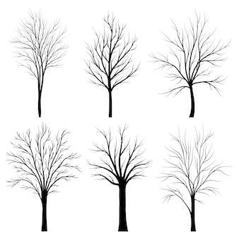 Bäume silhouetten gesetzt