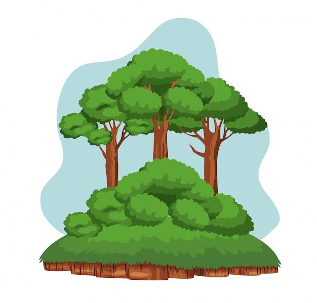 Bäume und shruberry über ein stück boden