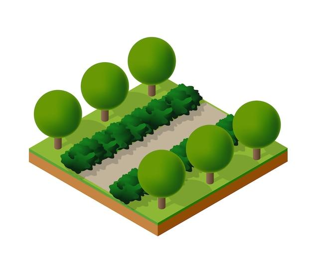 Bäume waldcamping