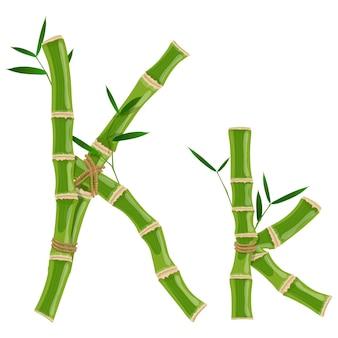 Bambusbuchstabe k mit jungen trieben mit blättern, öko-vektorschrift