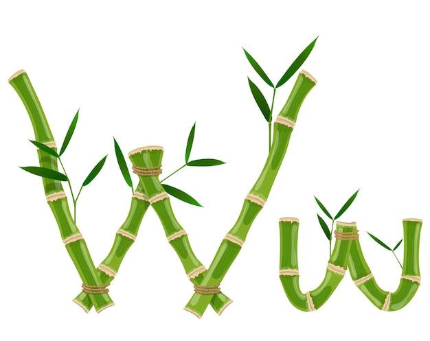 Bambusbuchstabe w mit jungen trieben mit blättern, öko-vektorschrift