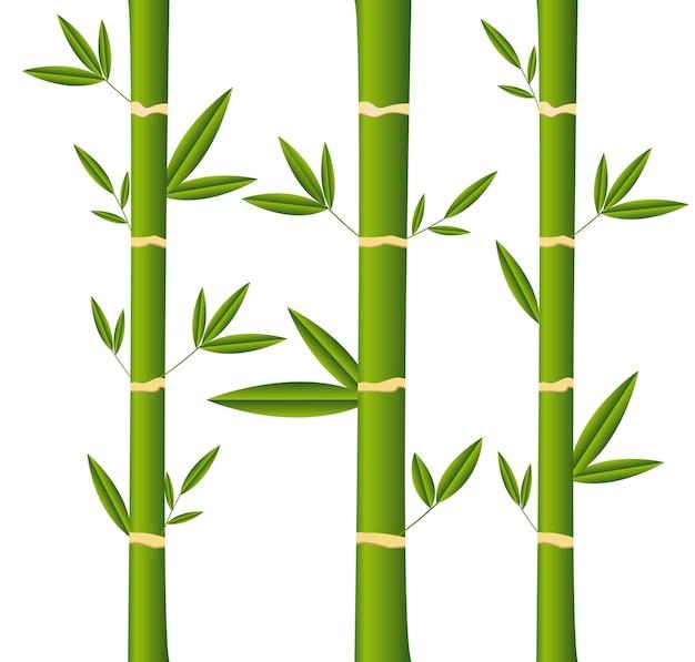 Bambusstangen